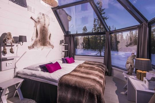 Glass igloo Finland | Northern Lights holiday | Finland-Holiday com