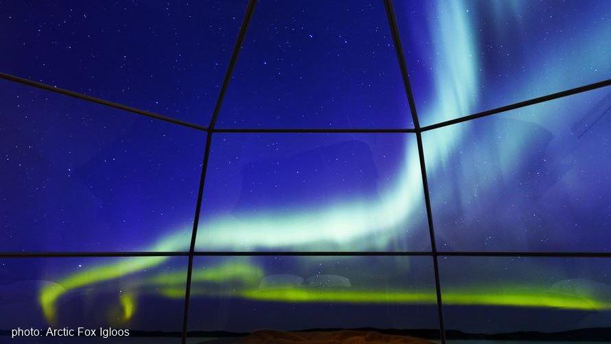 Arctic Fox glass igloo Northern Lights