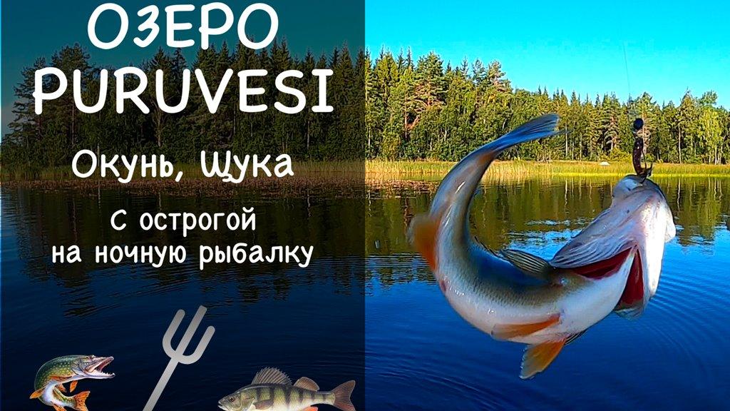 Рыбалка в Финляндии. Озеро Puruvesi. Отчет о рыбалке